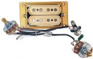 4-string_humbucker_Mapplewood