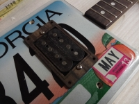 Workshop / Kurs - License Plate Guitar
